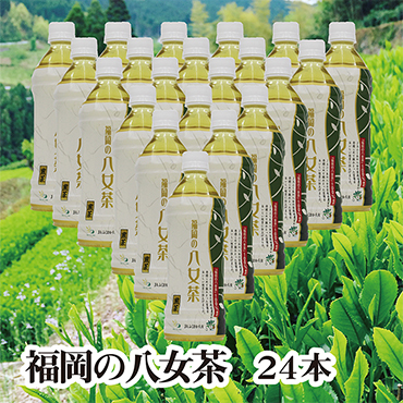 福岡の八女茶 煎茶ペットボトル(24本)