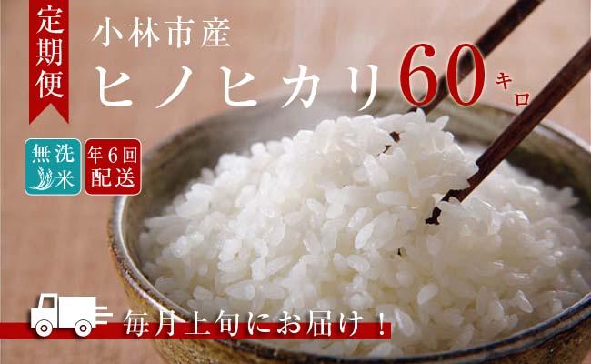 【定期便:全6回】小林産ひのひかり無洗米<10kg×6回>