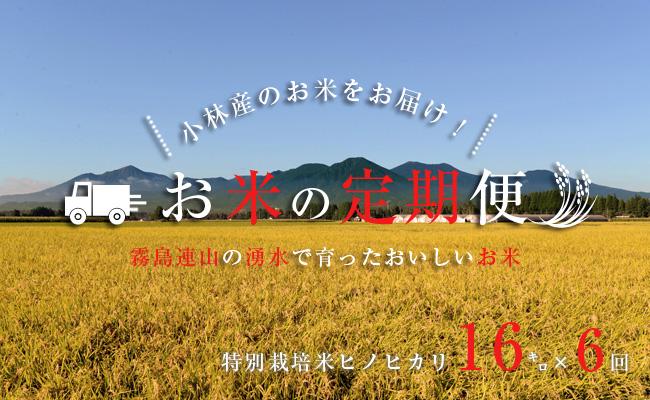 【定期便:全6回】山麓の特別栽培米ヒノヒカリ<16kg×6回>
