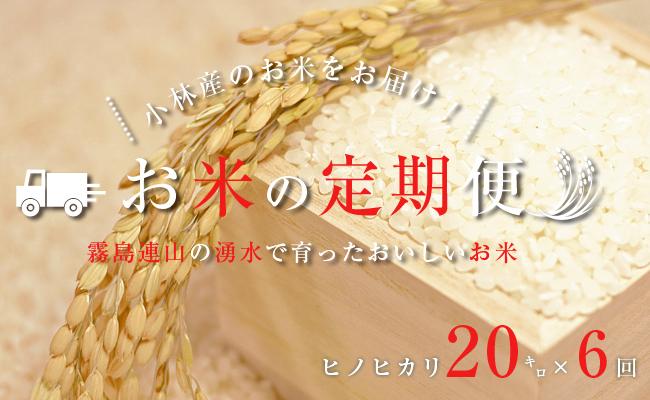 【定期便:全6回】里山のおいしいヒノヒカリ<20kg×6回>