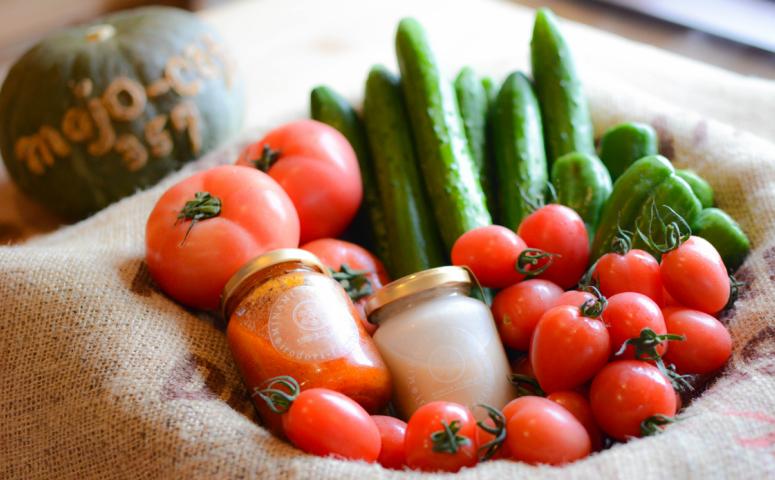 ■【獲れたて野菜】砂丘の宝 セット(ドレッシング付)