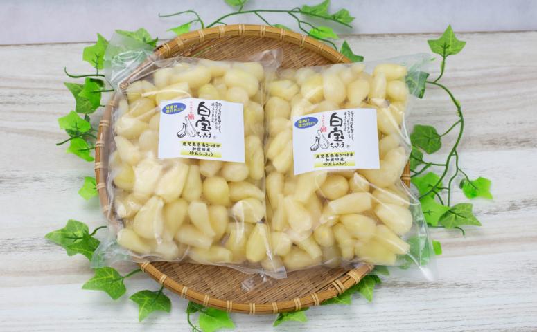 ■鹿児島県産砂丘らっきょう塩漬け(塩分3%)
